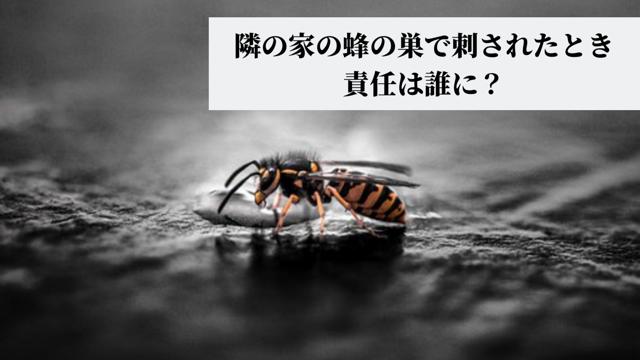 隣の家の蜂の巣で刺されたとき責任は誰に? もめないための解決方法