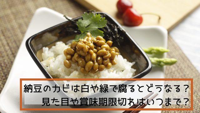 納豆のカビは白や緑で腐るとどうなる?見た目や賞味期限切れはいつまで?