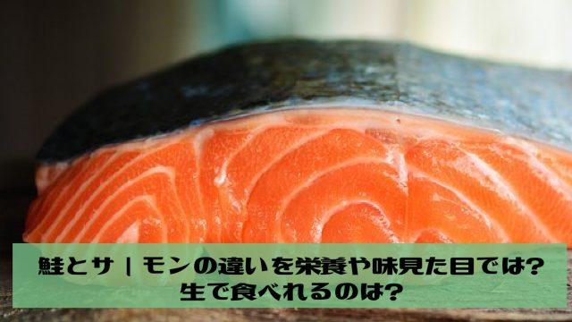 鮭とサーモンの違いを栄養や味見た目では?生で食べれるのは?