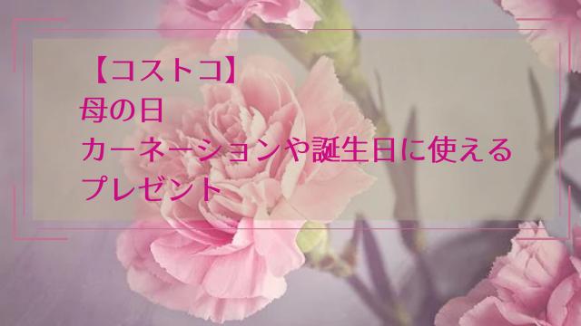 【コストコ】母の日にカーネーションや誕生日に使えるプレゼント